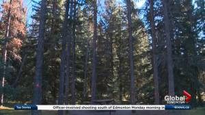 More information surfacing about massive construction project in Jasper National Park