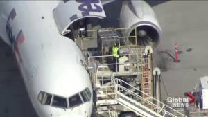 Pandas taken off plane in Calgary