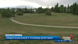 Woman sexually assaulted in field in Terwillegar Towne: EPS