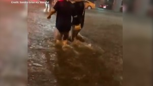 Baseball fans laugh as they wade through flood waters in Toronto following Blue jays game