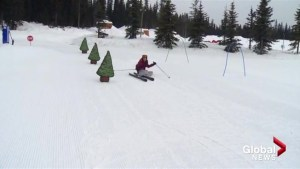 Big White offers locals-only ski lesson incentive