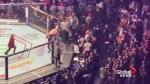 Brawl breaks out at Khabib vs McGregor UFC 229 fight
