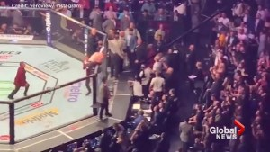 Brawl breaks out at Khabib vs McGregor UFC 229 fight