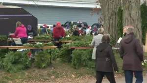 Gagetown holds annual 'Christmas in the Village'