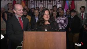 Government announces legislation to repeal section of criminal code on anal intercourse (02:09)