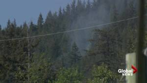 Crews on scene small forest fire in Lions Bay