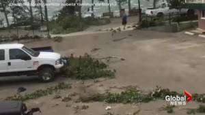 Sylvan Lake, Alberta residents capture extent of storm damage and powerful winds