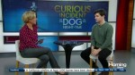 Joshua Jenkins talks Canadian debut of 'The Curious Incident of the Dog in the Night-time'