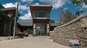 CEO of Edmonton Humane Society resigns in wake of cat neglect incident at shelter