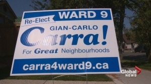 Are Calgary election signs popping up too soon?
