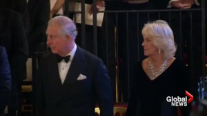 Celebrities including Judi Dench and Stephen Fry attend Prince Charles 70th birthday gala