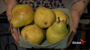 Nutrition: Picking the perfect pear