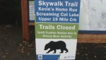 Four hikers escape unscathed after close encounter with a grizzly bear near Whistler