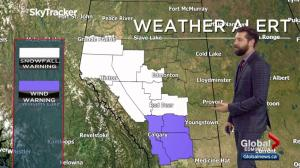 Edmonton Weather Forecast: Nov. 15