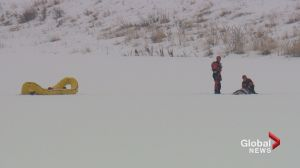 'Stay off the ice': Attempted deer rescue prompts warning from Calgary Fire Department