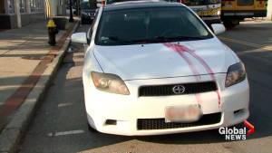Boston woman horrified after finding severed goat's head, picture of herself placed on her car