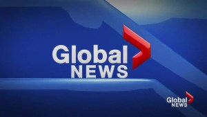 Global News at 5 Lethbridge: May 1