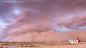 Wall of dust barrels through Phoenix, Arizona