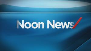 Noon News: Mar 28 (10:34)