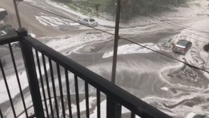 Hail and intense rain hit parts of Metro Vancouver taking residents by surprise
