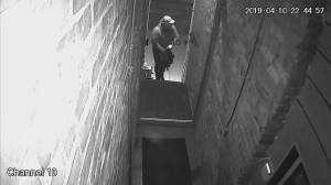 Toronto police release surveillance video of suspect in multiple break and enters