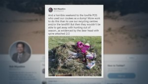 Lethbridge city councillor frustrated after finding trash, animal remains steps away from park