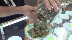 Will marijuana be legalized by July 1, 2018? (02:05)