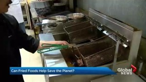 Can deep-frying help save the planet?