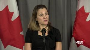 Living through 'most turbulent' moment since Second World War: Freeland