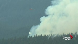 Blaze burning off Baden Powell Trail started by campers?