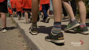 Elementary school students parade for pride week in Emerald Park