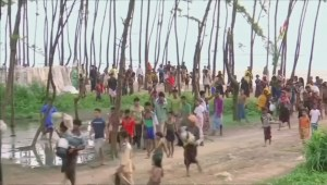 Could the world have done more to stop the Rohingya crisis?