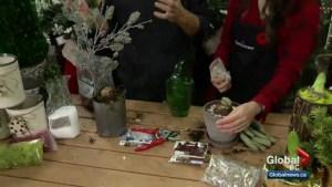 Gardenworks: Amaryllis