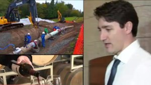 How can Ottawa intervene in provincial trade war?