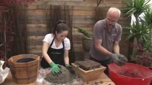 GardenWorks: DIY Planter