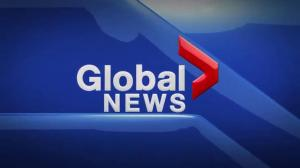 Global News Hour at 6 Edmonton: Nov. 20