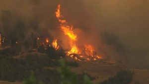 One-year anniversary of Elephant Hill fire