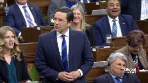 Tories say Liberals are using optics to convince on public carbon tax