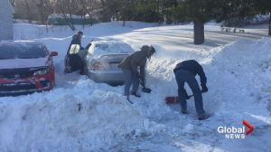 New Brunswickers lend a helping hand after powerful storm