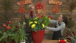 GardenWorks: Lunar New Year Planter