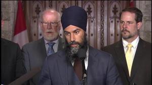 Singh calls for investment in clean energy jobs, not traditional energy