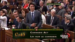 House of Commons votes to send amended pot legalization bill back to Senate (01:01)