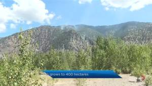Richter Mountain wildfire now estimated at 400 hectares in size