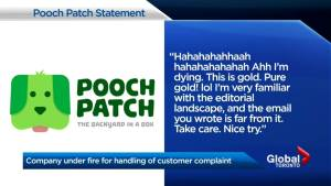 Fat jokes follow customer complaints to Toronto dog service company