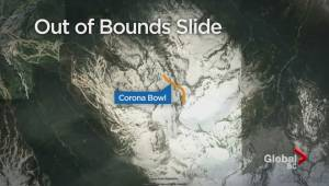 Father and child caught up in avalanche in Blackcomb Mountain