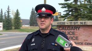 Police call fatal collision investigation tragic