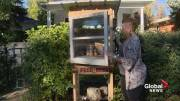 Play video: Lethbridge woman provides food to those in need with box in front of her home