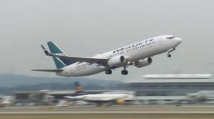 More countries ban 737 MAX 8 as concerns grow