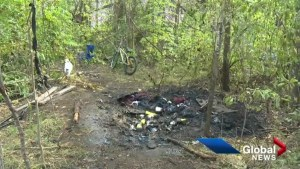 Homeless camp fire uncovers larger transient problem in Kelowna
