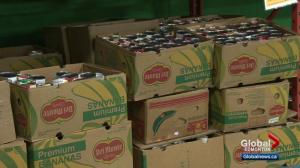 Edmontonians come through for food bank after initial concern over donations